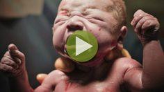 Die Geburt Deines Kindes steht kurz bevor? Dann ist dieses Video für Dich genau das Richtige: In einer anschaulichen Animation zeigt das Video detailliert, wie eine Geburt abläuft.