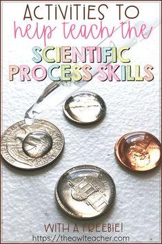 Activities to Help Teach Scientific Process Skills - The Owl Teacher