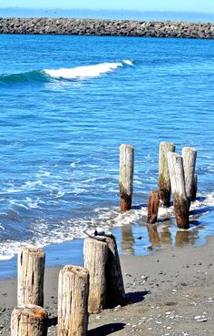 Pilings at Gold Beach OR