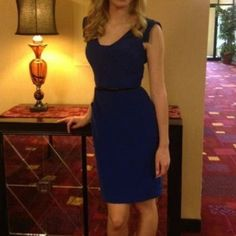 New Price Gorgeous Blue Interview Dress