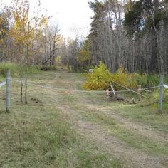 Ten years ago today -- on October 1, 2010 -- we took possession of the new 80-acre property that would become #NaturistLegacyPark. See it at manitobanudist.figleafforum.com/01oct2010 (John Kundert's Manitoba #Nudist Scrapbook).