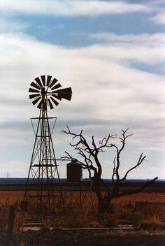 Windmill And Old Tree Free Stock Photo - Public Domain Pictures Free Stock Photos, Free Photos, Windmill Art, Public Domain, View Image, Wind Turbine, Windmills, Barns, Wheelbarrow