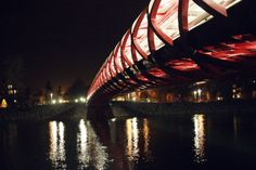 Peace bridge - Calgary