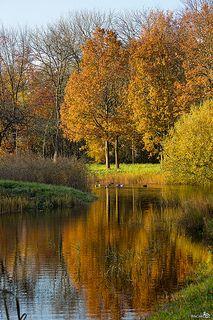 Herfst, Schuddebeurs, Zeeland.