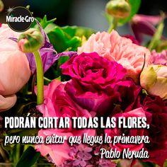 La #vida es como un #jardín, depende de ti mantenerlo hermoso.