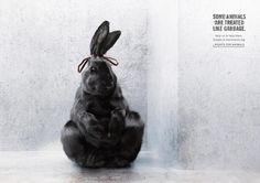 Advertising Break:Tuteliamo i diritti degli animali.