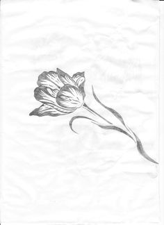 Tulip tattoo. The pedals would be dark purple for my mum. I think I'd get it on my foot.