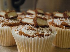 Bounty Cupcakes - chocolate and coconut.