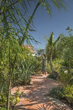 Tropical Garden, In The Heart, Lisbon, Spa, The Incredibles, Country, Green, Plants, House