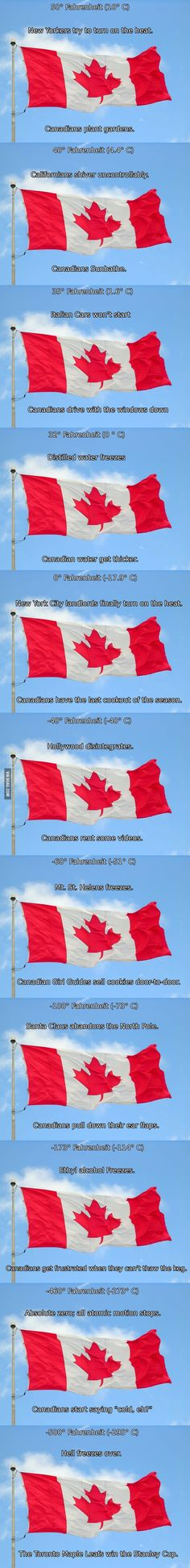Funny pictures about Official Canadian temperature chart. Oh, and cool pics about Official Canadian temperature chart. Also, Official Canadian temperature chart. Canadian Things, I Am Canadian, Canadian Humour, Canadian Facts, Chuck Norris, Funny Cute, The Funny, Super Funny, Funny Memes