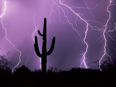 Desert storm Tucson Arizona