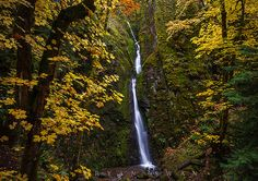 Soda Pops by Bryan Swan, via Flickr Lower Soda Falls, Cascadia State Park, OR