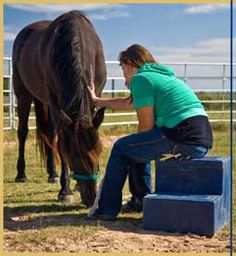 Equine therapy is an effective method for teaching teamwork, communication, and problem solving. It provides a natural setting in which to face fears and increase confidence and self-esteem.
