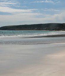Kingscote Nepean Bay Tourist Park www.parkmyvan.com.au #ParkMyVan #Australia #Travel #RoadTrip #Backpacking #VanHire #CaravanHire