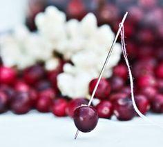 So einfach macht man eine  Cranberry-Popcorn-Girlande...
