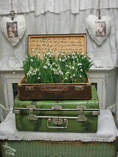 Ti-am pus in bagaje iubire si primavara, sa te insoteasca peste tot in lume O primavara plina de speranta, optimism, veselie si iubire <3 www.radiocatch22.com