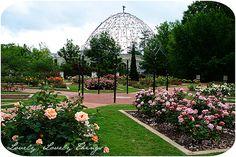 Google Image Result for http://lovelylovelythings.files.wordpress.com/2009/05/rose-garden-blog.jpg%3Fw%3D630