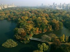 Central Park in NYC, first public park in US. 25 million people visit each year. 843 acres.