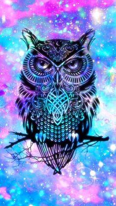 Pin de sandy en ♤:v ♡ owl wallpaper, galaxy wallpaper y cool Tier Wallpaper, Cute Galaxy Wallpaper, Owl Wallpaper, Animal Wallpaper, Iphone Wallpaper, Anime Galaxy, Galaxy Art, Cool Backgrounds, Wallpaper Backgrounds