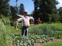 Spaventapasseri -Giardino Botanico Alpino Viotte  -  Scarecrow   http://lefotodiluisella.blogspot.it/