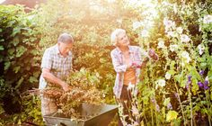 Why the RHS says gardening should be available on NHS prescription
