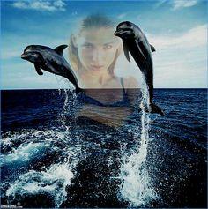 djd/dolphins ,sea and me http://imikimi.com/main/view_kimi/70HR-1u3