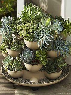 Indoor Cactus Garden Cactus Pinterest Gardens Garden