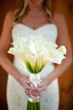 Would like to use Calla lilies in bouquet. Mom had them in her wedding bouquet. Lily Bouquet Wedding, Calla Lily Bouquet, White Wedding Bouquets, Bride Bouquets, Wedding Flowers, Calla Lilies, Bridesmaid Bouquets, Bride Flowers, Bouquet Flowers