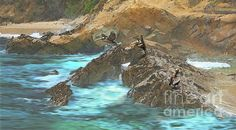 PELICANS AT LAGUNA by Todd L Thomas. Original painting available direct from artist $1950, Paypal DreamscapeCreative@Gmail.com with painting title...Prints also available at www.ToddLThomas.net
