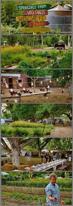Springdale Farms in Austin, Texas - farm, produce stand & Eden East restaurant