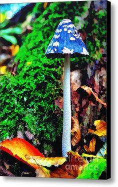 The Blue Mushroom Canvas Print / Canvas Art By Odon Czintos Mushroom Art, Mushroom Fungi, Wild Mushrooms, Stuffed Mushrooms, Mushroom Pictures, Pictures Of Mushrooms, Mushroom Tattoos, Slime Mould, Plant Fungus