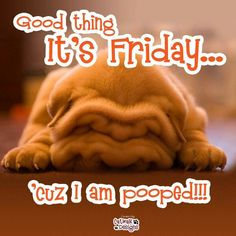 Good thing it's Friday... 'cuz I am pooped!!!