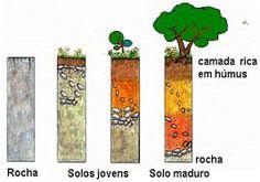 Resultado de imagem para camadas do solo