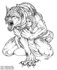 Werewolf Sketches Drawings