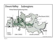 Portugal---Douro-Valley---Wine-Maps---SWE