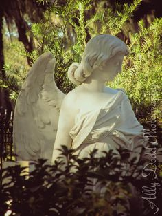 Bonaventue Cemetery --- Savannah --- Ally Dodd Photography