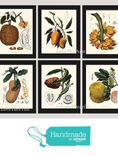 Fruit Print Set of 6 Antique Beautiful Botanical Mango Breadfruit Banana Grapefruit Citrus Tropical Plants Garden Nature Home Room Decor Wall Art Unframed BHN from LoveThePrint https://www.amazon.com/dp/B01L98W3N8/ref=hnd_sw_r_pi_dp_.Kc8xbTPZ8X2A #handmadeatamazon