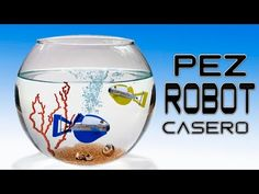 Como Hacer un Pez Robot Casero ( Sin Usar Pilas ) - YouTube