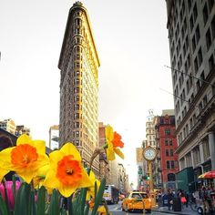 Spring, New York City