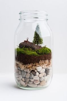 The terrarium is one of the modern flower pots that are now popular because it gives the impression of fresh natural plants in a unique and beautiful home. The terrarium is also an alternative to p… Mini Terrarium, Mason Jar Terrarium, Terrarium Plants, Succulent Terrarium, Mason Jar Diy, Fairy Terrarium, Terrarium Wedding, Moss Garden, Succulents Garden