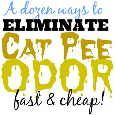 Don't panic – you can actually get rid of cat pee odor very quickly using ordinary, everyday items you already have.