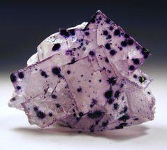 bijoux-et-mineraux: Fluorite I will name you: Spot.