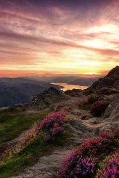 Scotland Nature, Scotland Landscape, Scotland Travel, Ireland Travel, Highlands Scotland, Scottish Highlands, Scotland Wallpaper, Places To Travel, Places To Go