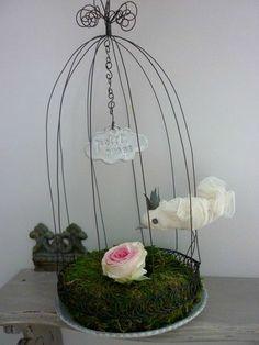 wire birdcage