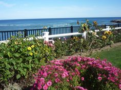 There's nothing quite like walking the Marginal Way by the ocean in Ogunquit, Maine, during the summer! http://visitingnewengland.com/blog-photo-tour/2012/01/30/walking-the-marginal-way-in-ogunquit-maine/