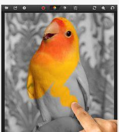 Webdizajn - v akom programe upraviť obrázky na internetové stránky? Ako upraviť obrázky na web stránky?