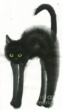 Astonished by Mui-Joo Wee Crazy Cat Lady, Crazy Cats, Illustrations, Illustration Art, I Love Cats, Cool Cats, Black Cat Art, Unique Art, Cats And Kittens