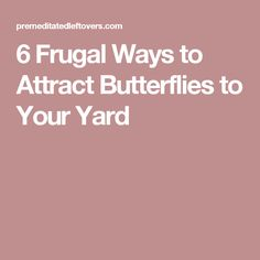 6 Frugal Ways to Attract Butterflies to Your Yard including how to attract butterflies to your garden and attracting butterflies without spending a lot. Backyard Projects, Garden Projects, Backyard Ideas, Butterfly Feeder, Fairy Tree Houses, Gardening Tips, Frugal, Attraction, Butterflies
