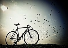Yes, bikes do give you wings.