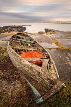 Scotland, Sea Company by Ray bradshaw